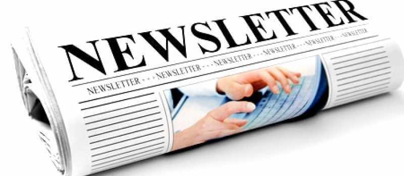Newsletter Consultant web marketing